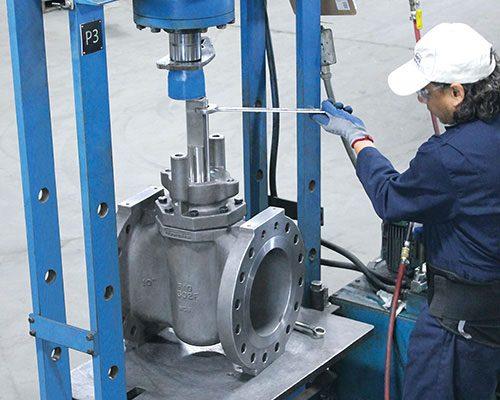 Severe Service valve assembly FluoroSeal